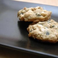Blueberry White Chocolate Chunk Gingner Cookies Recipe