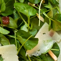 Watercress Salad With Manchego Membrillo And Almonds Recipe