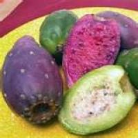 Image of Antique Cactus Salad Recipe, Group Recipes
