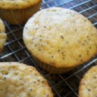 Image of Andrews Lemon Cupcakes Recipe, Group Recipes