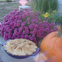 Image of Apple Pie Recipe, Group Recipes