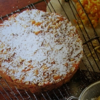Image of Almond And Apricot Cake Recipe, Group Recipes