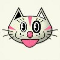 chevythecat
