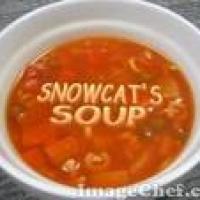 snowcat17